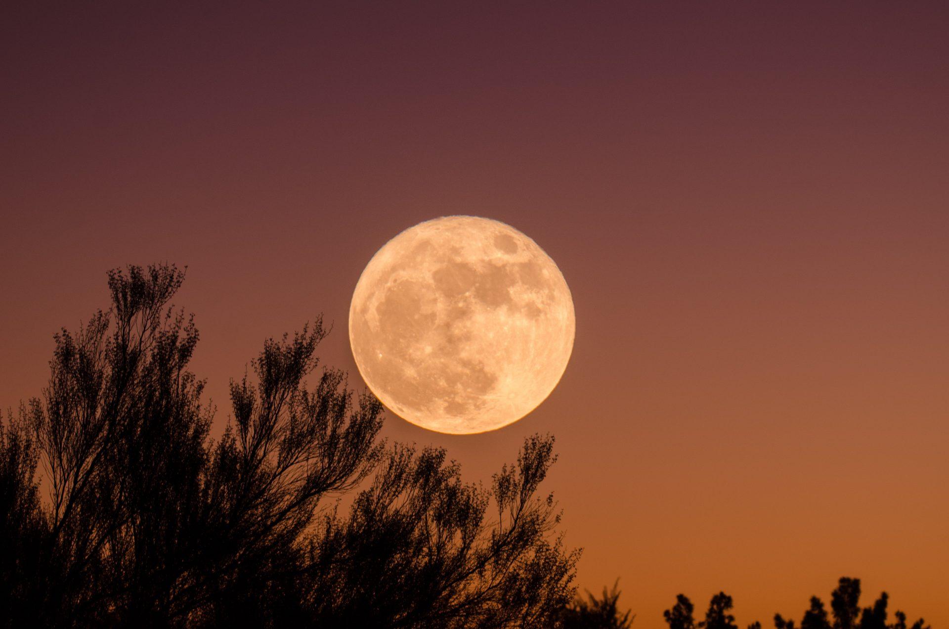 Why Ashtangis Take Rest on Moon Days